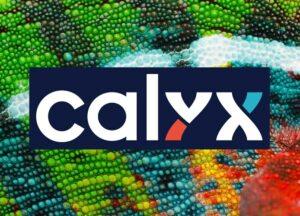 Calyx